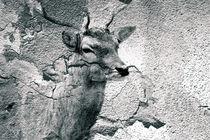 Höhlenmalerei 2.0  by Bastian  Kienitz