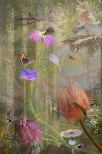 Hebborner Zauberwald von © Ivonne Wentzler