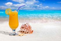 Beach-holiday-cocktail-5