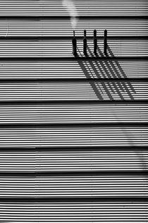 Rauch & Schatten  von Bastian  Kienitz