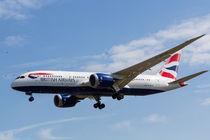 British Airways and Birds by David Pyatt