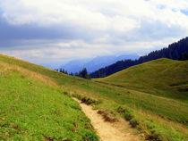 Höhenweg by Ulrike Ilse Brück