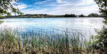 Lake of Banyoles (Catalonia) by Marc Garrido Clotet