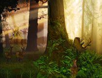 Waldabendfrieden von Heidi Schmitt-Lermann