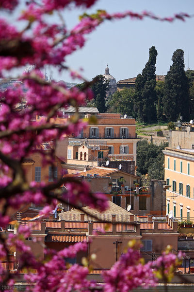 Rome-eternal-city-15