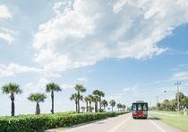 Florida von Ruby Lindholm