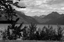 Glacier NP by Ellen Bollinger