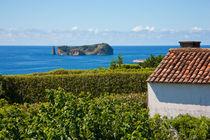 Islet in Azores by Gaspar Avila