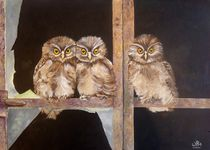 Owls in the window by Wendy Mitchell