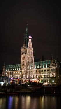 Hamburg im Winter von Mirco Brandt