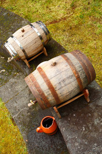 Wine barrels by Gaspar Avila