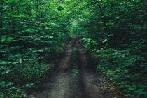 green von arkady