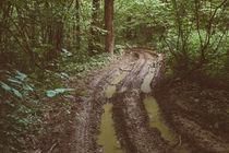 mud von arkady