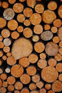 Holzstapel... 3 von loewenherz-artwork