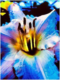 Midnight  (c)MaryLeeParker15 von Mary Lee Parker