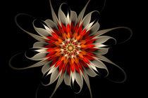 Klassische Blüte von Viktor Peschel