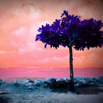 idylle by Walli Gutmann