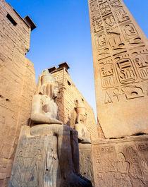 Meg41-luxor-temple-egypt
