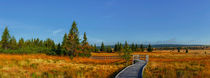 Weg ins rote Moor by moqui