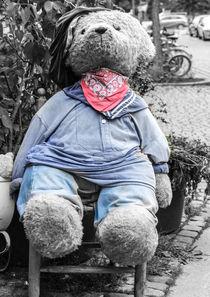 Teddy by Rolf Hackemann