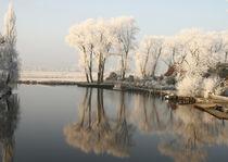 Frosty Day von Rolf Hackemann