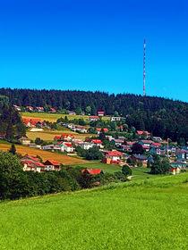 Grünes Gras, ein Dorf und der Sendemast von Patrick Jobst