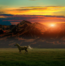 galloping horse in first sun rays over moutains von paganin
