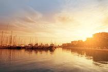 harbor in Palma de Mallorca in afternoon light von paganin