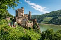 Burg Rheinstein 52 von Erhard Hess