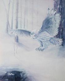 Snowy Owl von wenslow