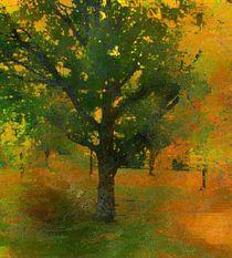 Herbstlich von barbaram