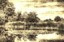 The Lily Pond Vintage von David Pyatt