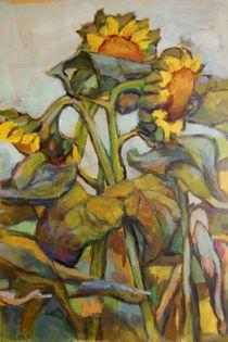 sonnenblumen von alfons niex