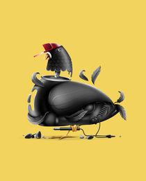 Street Pigeon by Vytis Vasiliunas