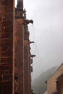 Wasserspeiende Wasserspeier von Sabine Radtke