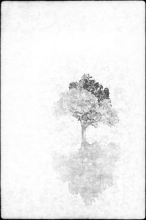 White Tree by ealin