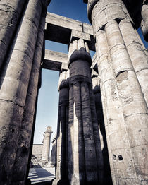 the Hypostyle Hall Luxor Temple Egypt von Sean Burke