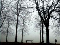 Novembermorgen von barbaram