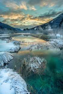 Sunrise at winter Zelenci III by Bor Rojnik
