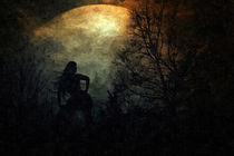 Die Frau im Mondlicht by Sandra Kaltofen