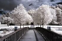 Brücke Infarot by airde