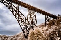 Brücke im Wald von airde
