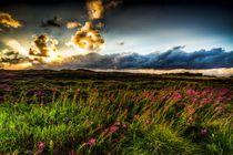 Lichterspiel und Wolkentreiben von Tobias Thiele