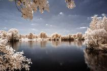 Schöner See-Blick von flylens