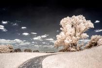 Straße zu den Wolken von flylens