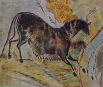 Wild-horse-8500