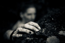 Nature's Hand by Holger Feierabend