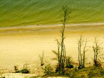 Am Strand von imbild-verlag