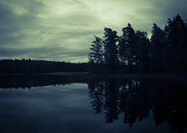 Lake by Night von Nicklas Gustafsson