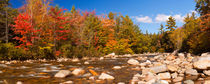 River through fall foliage, Swift River, New Hampshire, USA von Sara Winter